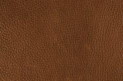 коричневая текстура кожи крупного плана текстура веснушек предпосылки кожаная Стоковое Изображение RF
