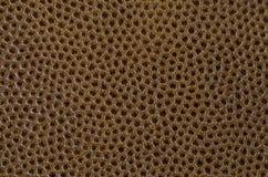 коричневая текстура кожи крупного плана текстура веснушек предпосылки кожаная Стоковые Фотографии RF