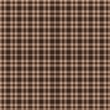 коричневая шотландка Стоковые Изображения RF