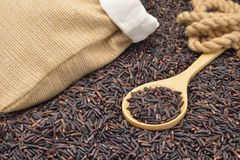 коричневейте органический рис Стоковые Фотографии RF
