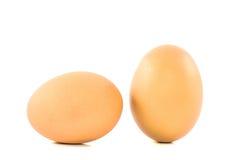 Коричневое яичко цыпленка 2 изолированное на белизне Стоковая Фотография RF