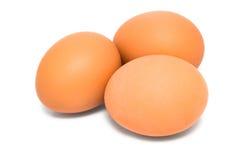 Коричневое яичко 3 Стоковые Фотографии RF
