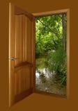 коричневой деревянное двери раскрытое пущей Стоковое фото RF