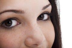 коричневые глаза стоковые фотографии rf
