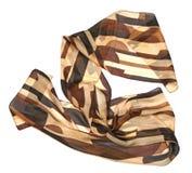 коричневые женщины шарфа Стоковые Изображения