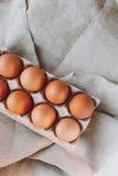 коричневые пасхальные яйца Стоковая Фотография