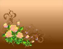 коричневые розы Стоковая Фотография RF