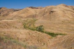 коричневые холмы Стоковая Фотография