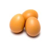 коричневые яичка свежие Стоковая Фотография