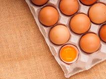 коричневые яичка цыпленка в коробке Стоковая Фотография