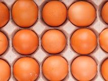 коричневые яичка цыпленка в коробке Стоковое Фото