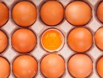 коричневые яичка цыпленка в коробке Стоковые Изображения