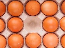 коричневые яичка цыпленка в коробке Стоковые Изображения RF