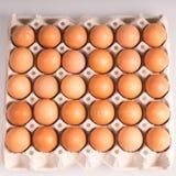 коричневые яичка цыпленка в коробке Стоковое фото RF
