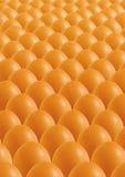 коричневые яичка Стоковое Изображение