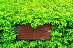коричневый зеленый цвет выходит знак Стоковое фото RF