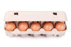 коричневый пакет яичек 10 коробки Стоковое Изображение