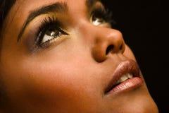 коричневый портрет Стоковые Фотографии RF
