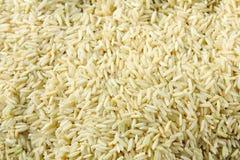 коричневый рис зерен uncooked Стоковые Фотографии RF
