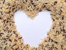 коричневый рис тайский Предпосылка изолята Стоковая Фотография