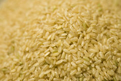 коричневый рис Стоковые Фото