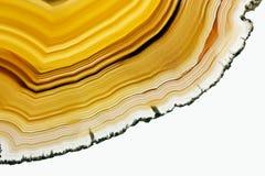 коричневый цвет агата Стоковое Изображение RF