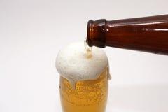 коричневый цвет бутылки пива золотистый Стоковая Фотография RF