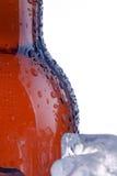 коричневый цвет бутылки Стоковое Фото