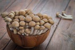 Коричневый цвет гриба Shimeji в деревянном шаре Стоковая Фотография