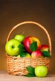 коричневый цвет корзины яблок органический Стоковое фото RF