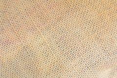 Коричневый цвет мешка пеньки Стоковое фото RF