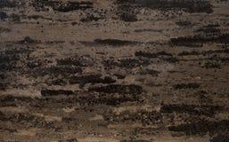 коричневый цвет может мраморизовать мраморы мое другое портфолио видит текстуру для посещения Стоковые Изображения RF