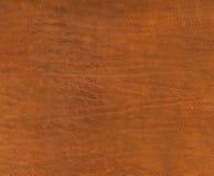 коричневый цвет нанимает кожаную текстуру Стоковые Изображения RF