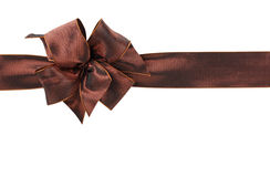 коричневый цвет смычка Стоковое Фото