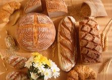 коричневый цвет хлеба Стоковое Изображение