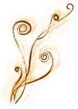 коричневым лоза проиллюстрированная папоротником Стоковое Изображение RF