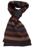 коричневым шерсти striped шарфом стоковая фотография rf