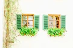 2 коричневых окна с зелеными штарками и цветками Стоковые Изображения