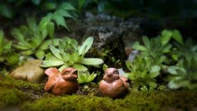 2 коричневых птицы глины в саде Стоковое Изображение