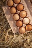 10 коричневых яичек в коробке картона на соломе Стоковое Изображение RF