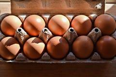 10 коричневых яичек в фотографии еды крупного плана взгляда сверху коробки Стоковое Фото