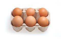 6 коричневых яичек изолированных на белой предпосылке Стоковая Фотография RF