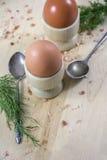 2 коричневых яичка в деревянных баках с ложками и укропом Стоковое Изображение