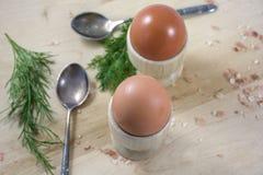 2 коричневых яичка в деревянных баках с ложками и фенхелем Стоковое фото RF