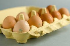 12 коричневых яичка в желтой коробке яичка Стоковая Фотография RF