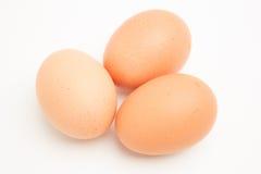 3 коричневых яичка Стоковые Фото