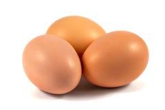3 коричневых яичка цыпленка изолированного на белизне Стоковая Фотография RF