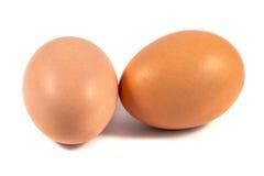 2 коричневых яичка цыпленка изолированного на белизне Стоковое Изображение