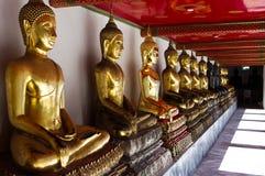 Коридор Wat Pho длинный стоковые изображения rf