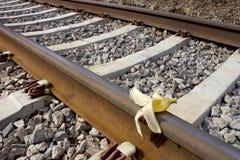 Корка банана на пути рельса, Humoristic ` вредительства ` Стоковые Фотографии RF